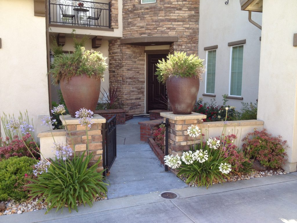 Sacramento Landscape Services