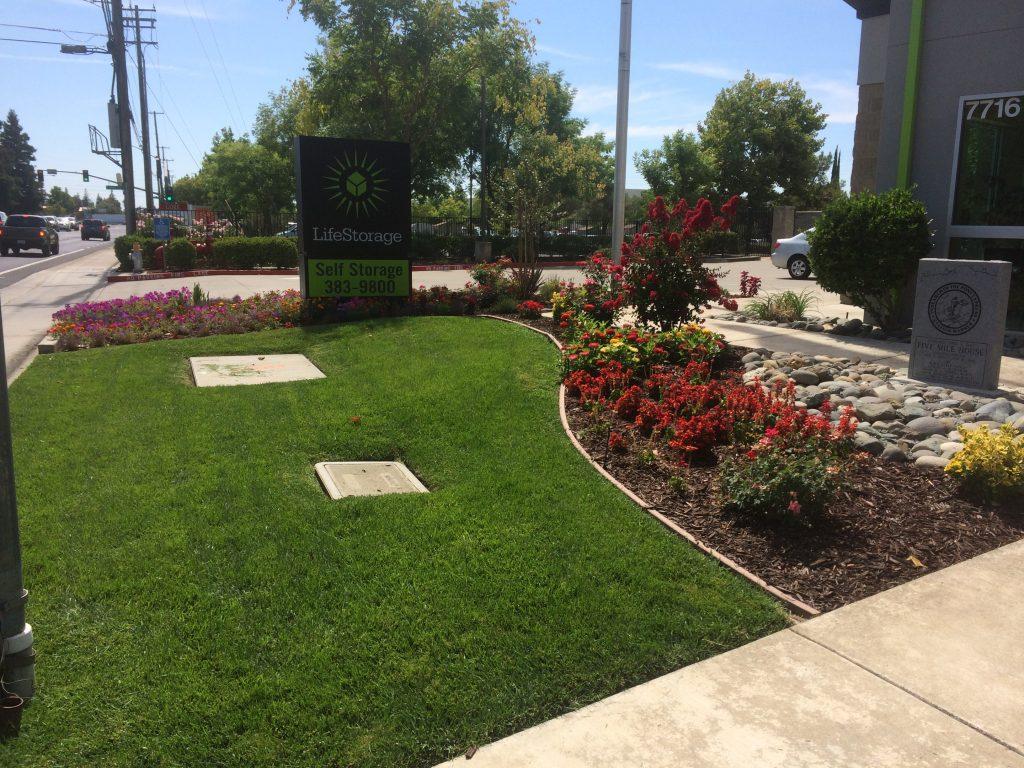 Sacramento Landscape Contractor I CuttingEdge Tree & Landscape Inc.- 916 420-5607