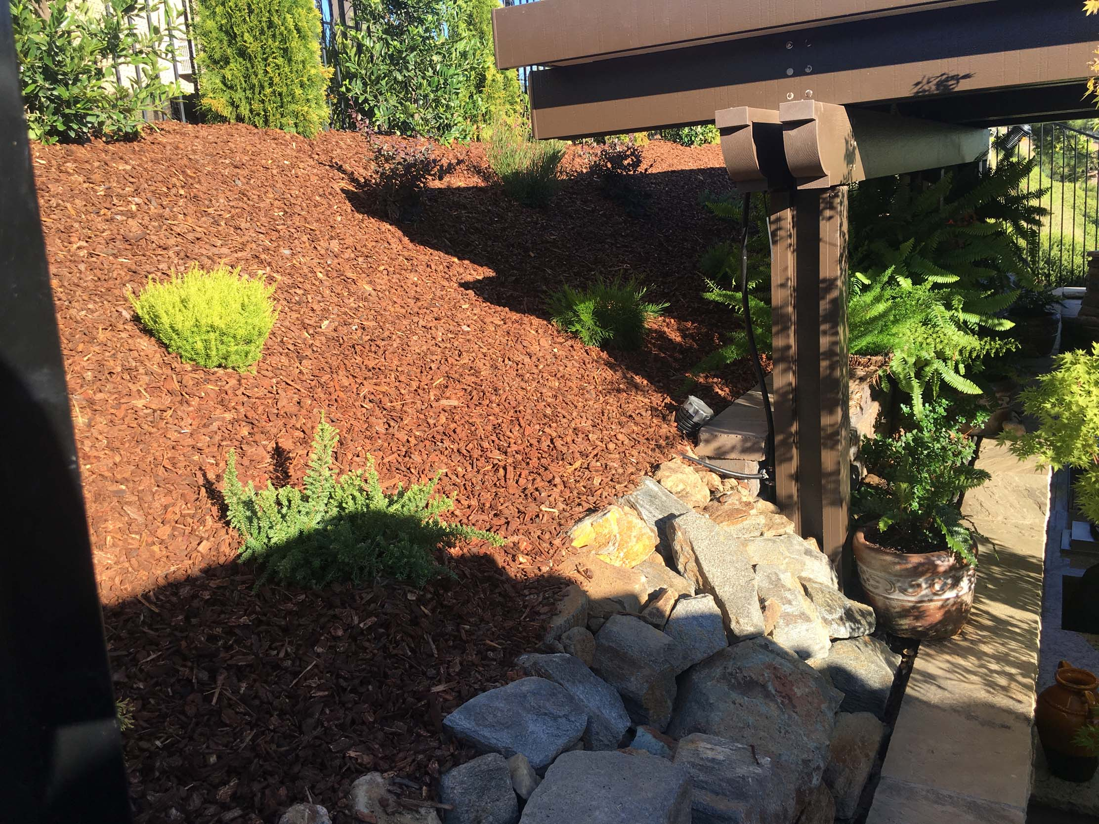 Recently completed residential landscaping project in El Dorado Hills, CA.