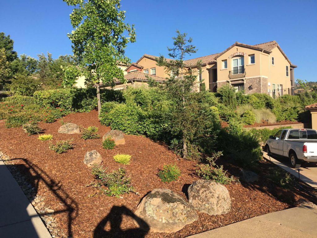 Residential landscaping project in El Dorado Hills by CuttingEdge Tree & Landscae Inc.