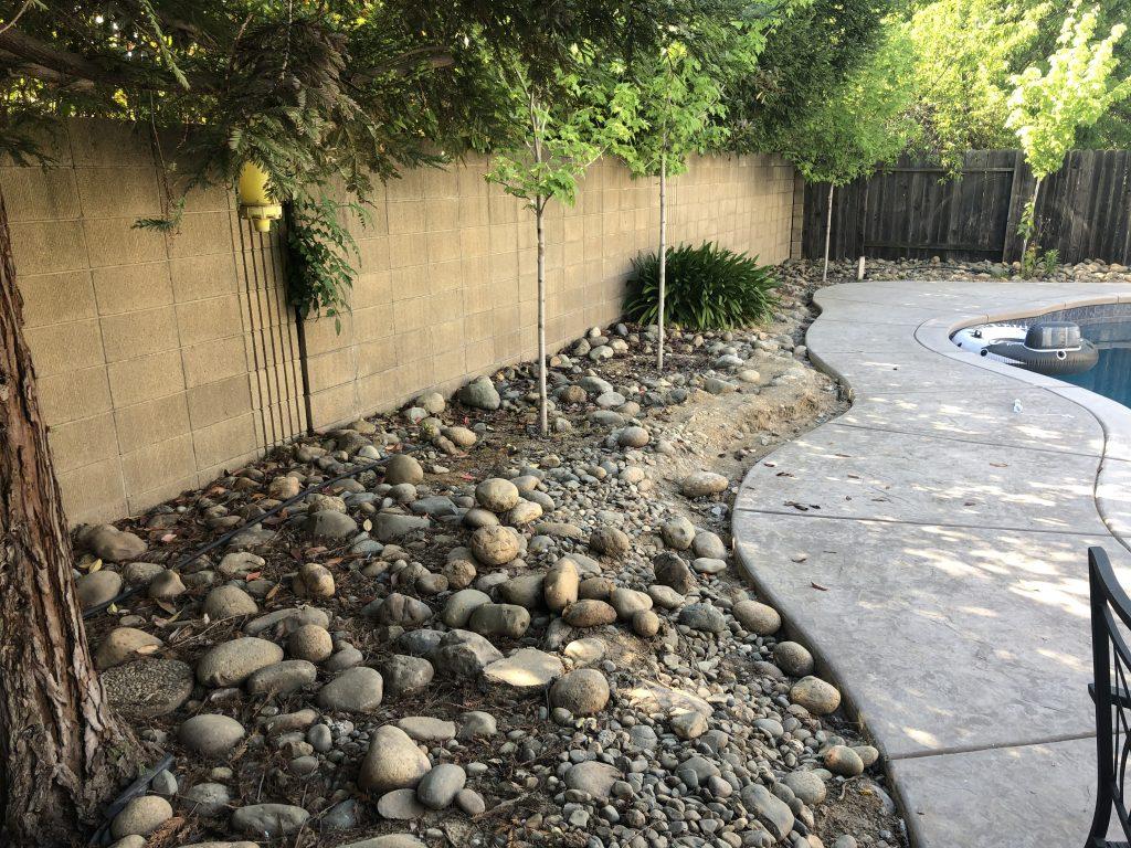 Rocks around the pool in Sacramento by CuttinEdge Tree & Landscape Inc.